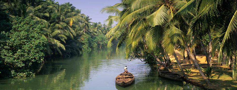kerala-back-water.jpg